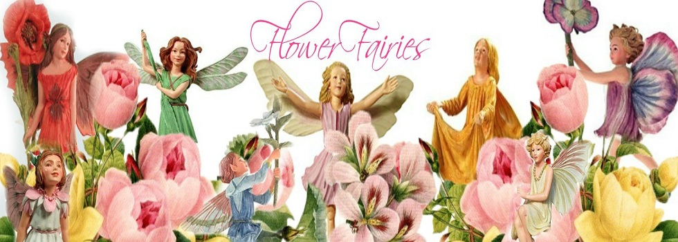 flower-fairies-banner-cat.jpg