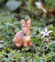 Itty Bitty Betsy Bunny