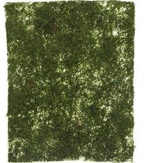 Moss Mat 45 x 40cm