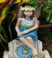 Fairy Hazel