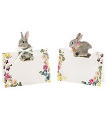 Truly Bunny Place Cards