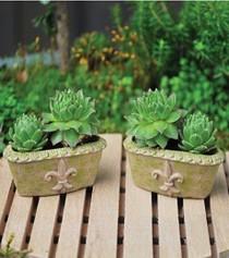 Garden Pots S/2