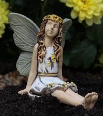 Fairy Sunny