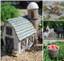 Farm Fairy Kit