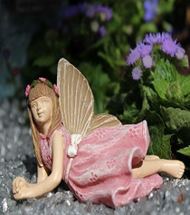 Fairy Addison