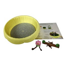 Flower Fairies Pot w/ Teeter Tooter & Birdbath