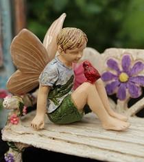 Fairy Alex