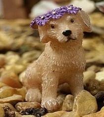 Puppy Lulu