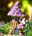 Purple Flower Solar House