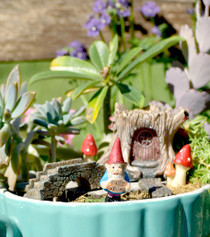 Log Fairy Garden Kit