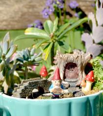 Log Fairy Garden Kit