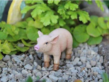 Bacon the Piglet
