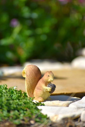Enchanted Garden Squirrel