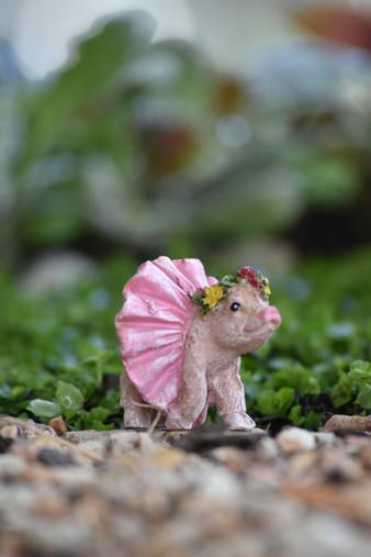 Miniature Fairy Garden Pig | Miniature Fairy Garden | Percy the Pig