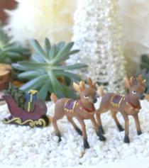 Santa Deers w/Sleigh
