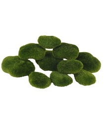 Moss Rocks S/5