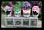 Miniature Fairy Garden Pots | Miniature Fairy Garden Accessories | Home Potted Garden