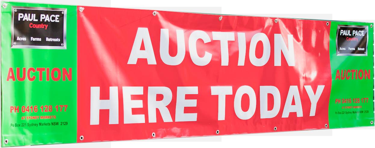 auctionbanner.png
