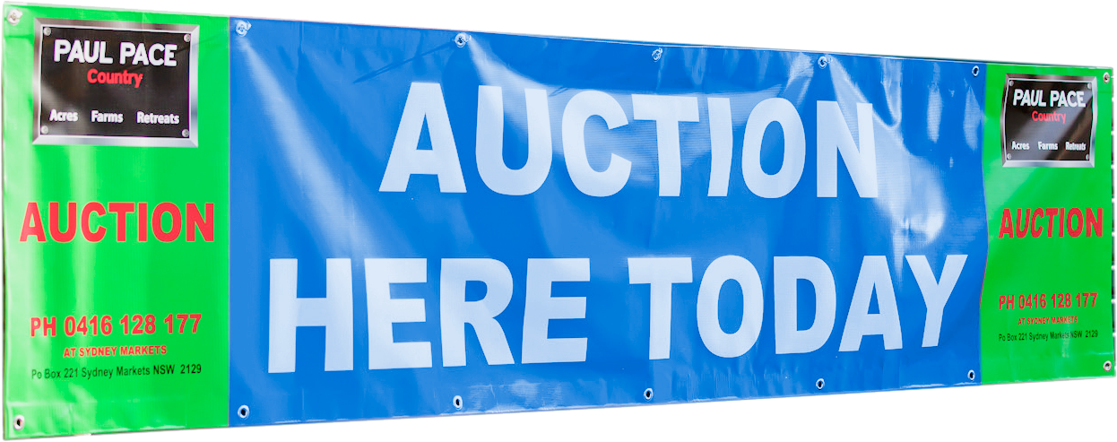 auctionbanner2.png