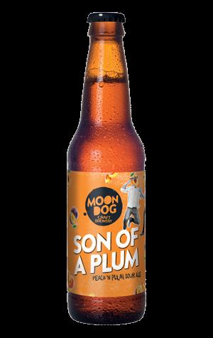Moon Dog Son of a Plum Sour Ale