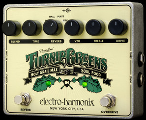 Electro Harmonix     Turnip Greens	  Multi-effect