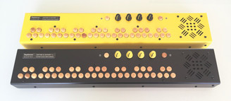 CRITTER & GUITARI SEPTAVOX SYNTHESIZER (pre order)