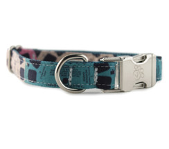 Viewfinder in Blue Dog Collar