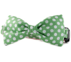 Lime Dot Bow Tie Dog Collar