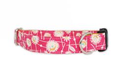 Kylie Dog Collar