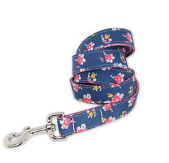 Aurora Dog Leash