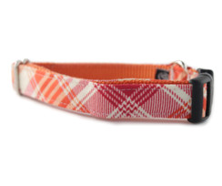 Sorbet Plaid Dog Collar