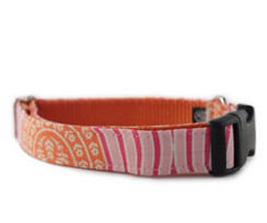 Tangerine and Pink Dog Collar