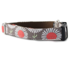 Daisies in Taupe Dog Collar