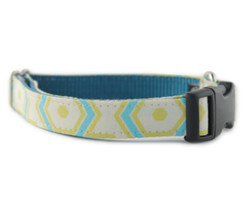 Ashton Dog Collar