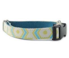 Ashton Dog Collar