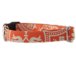 Flynn Dog Collar