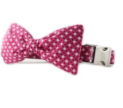 Raspberry Tiny Dot Bow Tie Dog Collar