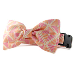 Ainsley in Orange Bow Tie Dog Collar