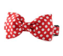 Crimson Dot Bow Tie Dog Collar