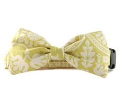 Solana Bow Tie Dog Collar