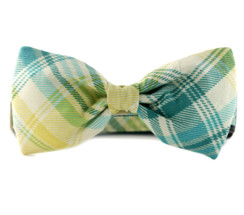 Garden Plaid Bow Tie Dog Collar