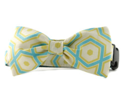 Ashton Bow Tie Dog Collar