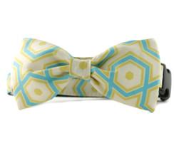 Ashton Bow Tie Dog Collar
