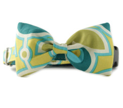 Green Bloom Bow Tie Dog Collar