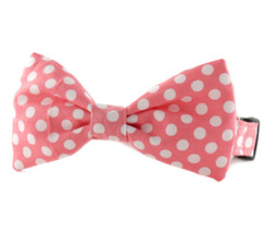 Bubble Gum Dot Bow Tie Dog Collar