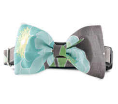 Aster Bow Tie Dog Collar