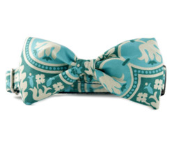 Abilene Bow Tie Dog Collar