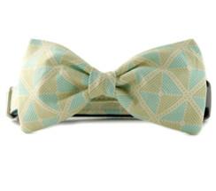 Ainsley Bow Tie Dog Collar