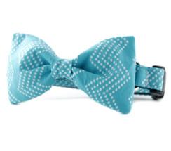 Aqua Splash Chevron Bow Tie Dog Collar
