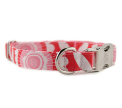 Bethany Dog Collar